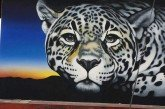 Tucson Mural Honoring America's Only Known Jaguar to Be Unveiled May 19