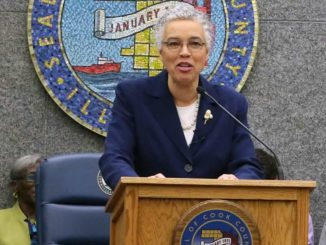 Toni Preckwinkle, Cook County Board